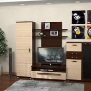 Набор мебели для гостиной Виола фото