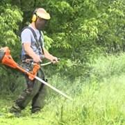 Услуги по покосу, скашиванию травы, бурьяна Тюмень фото