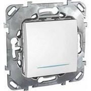 Unica Выключатель 1-кл. кнопочный с инд. ламп MGU5.206.18NZD (упак. 10ш фото
