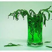 Напитки с натуральным соком Куликово поле фото
