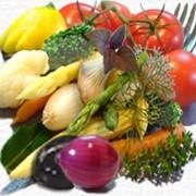 Овощные салаты, салаты, консервированные фото
