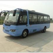 20-Местный Пассажирский Электроавтобус фото