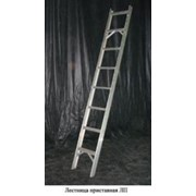 Лестница приставная алюминиевая ЛП фото