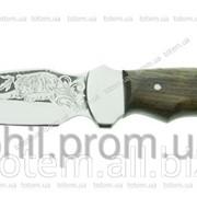 Туристический нож Спутник Клык фото