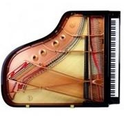 Инструменты клавишные, классика ВИП в Украине фото