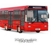 Автобус Паз 3237 фото