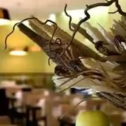 Ресторан Petrovski фото
