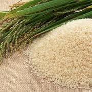 Масло рисовых отрубей 50гр фото