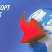 Импорт агент фото