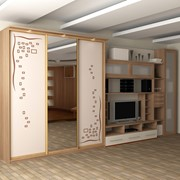 Мебель на заказ шкафы купе кухни фото