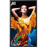 Дисплей LCD Panasonic TH-80LF5 фото