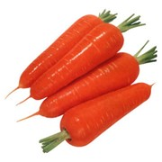 Морковь, Морковь оптом фото