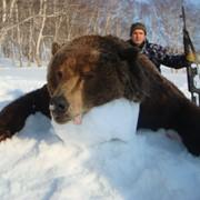 Охота на камчатского медведя в комфортных условиях фото