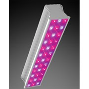 """Светодиодная фитолампа LED СКУ01 """"Fito"""" 100w фото"""
