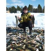 Круизы по Байкалу и рыбалка фото