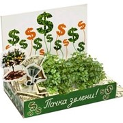 Пачка-зелени! Живая открытка Happy Plant наборы для выращивания фото