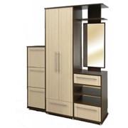 Мебель для прихожих Дельта фото