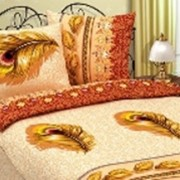 Ткань постельная Поплин 115 гр/м2 220 см Набивная Перо/S114 ZT фото