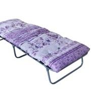 Кровать раскладная (раскладушка) КТР-2ЛМ фото