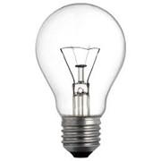 Лампочки фото