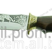 Туристический нож Спутник Тигр фото