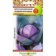 Семена Капуста к/к Поздняя красавица (0.5г) фото