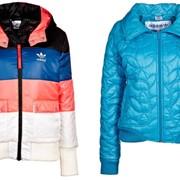 Куртки спортивные женские фото