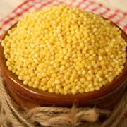 Пшеничные крупы фото