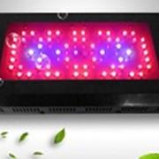 Светодиодная лампа для растений 180WGrowLED JCX фото