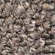 Покрытия ковровые Tarkett фото