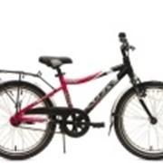 Велосипеды детские Pilot 210 Boy фото