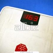 Весы бытовые напольные фото