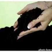 Универсальное концентрированное органическое удобрение фото