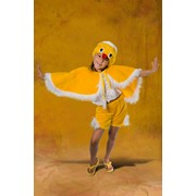Прокат костюмов новогодних, карнавальных для детей. Скидка 5% всем, пришедшим с all.biz. Все коллекции Вы можете посмотреть на нашем сайте фото