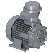 Электродвигатели, Стандартный электродвигатель. фото