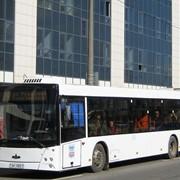 Автобус городской пассажирский МАЗ-203 фото