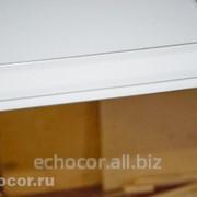 Потолочные панели скрытого монтажа, ЭхоКор 70/600 ПС фото