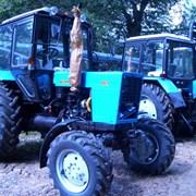Трактор Беларус  фото