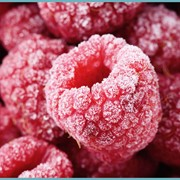 Raspberry (малина) фото