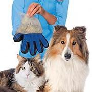 Перчатка для вычесывания животных фото