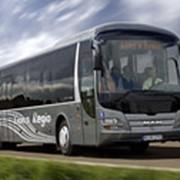 Междугородные автобусы Lion's Regio фото