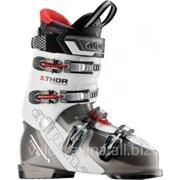 Горнолыжные ботинки ALPINA X THORE 9, 3A301 фото