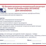 Белково-витаминно-минеральный концентрат для свиноматок 5% Panto F-10 (Profi Kern) фото