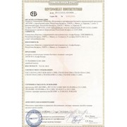 Сертификат таможенного союза фото