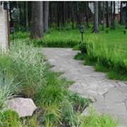 Проектирование и строительство садовых дорожек. фото