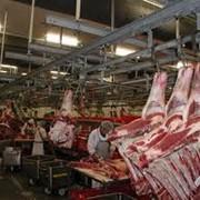 Хранение мясной продукции фото