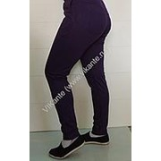 Спортивные брюки 13, артикул 67 (44, 164) фото