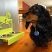 Миски для животных фото