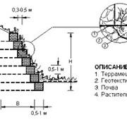 Габионы -система Террамеш 3х2х1 фото