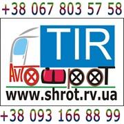 фото предложения ID 16256265